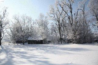Winter Beauty in Hendricks County
