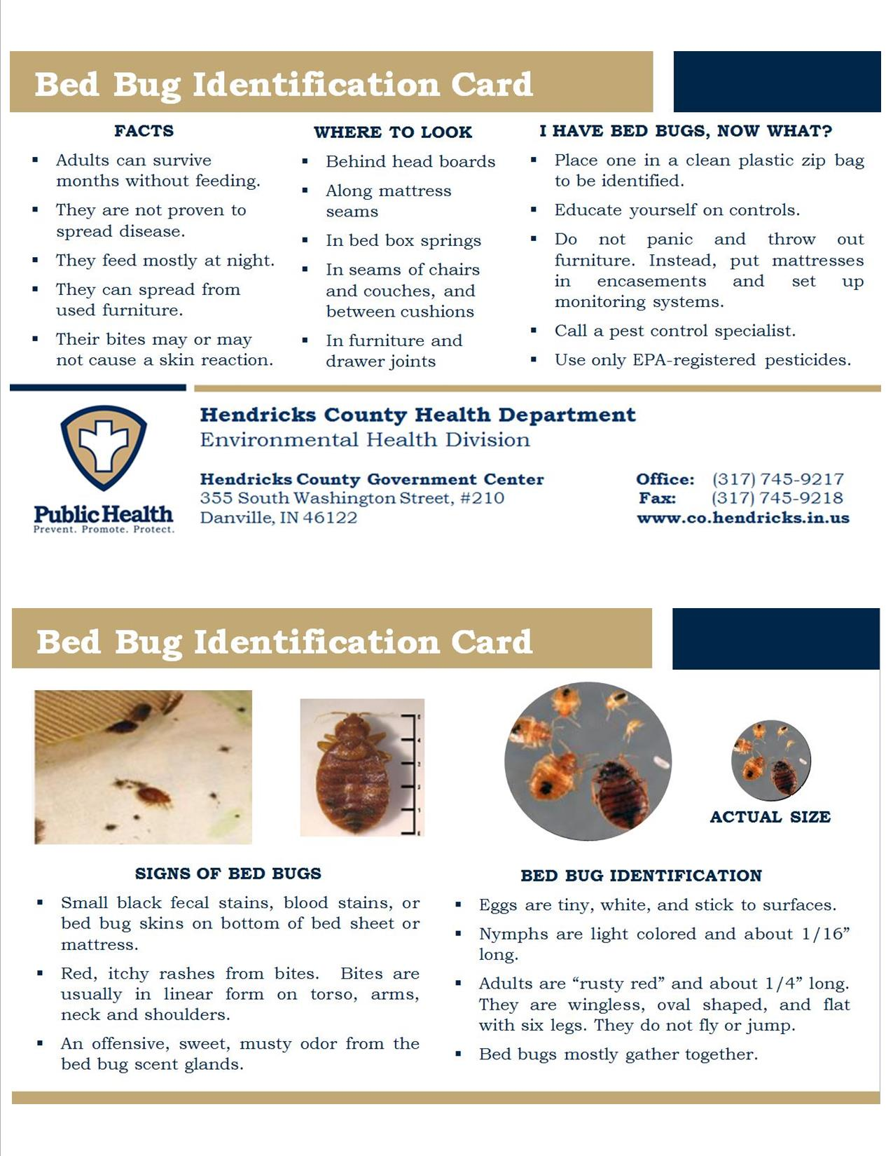 Bed Bug ID Card