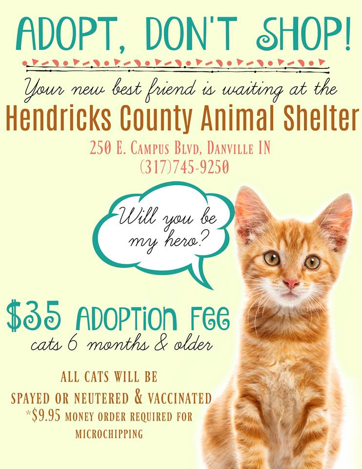 Adoption Event Hendricks County In